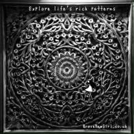 Explore life's rich patterns